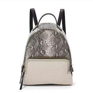 Fossil women's snake print 🐍 backpack